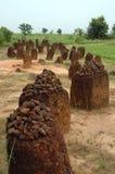Immagine verticale dei cerchi di pietra di Wassu Fotografia Stock Libera da Diritti
