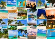 Immagini dei maldives della spiaggia di estate Fotografia Stock Libera da Diritti