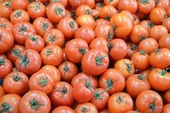 Immagini dei pomodori in una sezione di vendite della drogheria Fotografie Stock Libere da Diritti