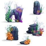 Immagini delle pietre del mare con le alghe illustrazione di stock
