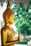 Immagini di Buddha che sono adorate dai buddisti trovati comunemente alle tempie in Tailandia fotografia stock libera da diritti