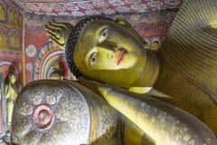 Immagini di Buddha in dambulla Fotografia Stock Libera da Diritti
