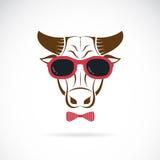 Immagini di vettore degli occhiali da sole d'uso del toro illustrazione di stock