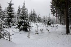 Immagini romantiche di inverno fotografia stock