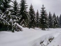 Immagini romantiche di inverno immagini stock libere da diritti