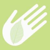 Immagini sugli oggetti ecologici Fotografia Stock
