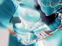 Immagini termiche della testa umana Immagine Stock Libera da Diritti