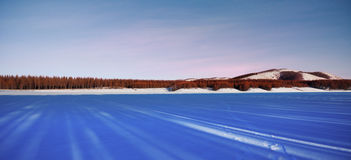 Immense forest and snowland. Shadow of immense forest and snowland Royalty Free Stock Photography