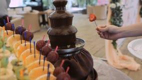 Immergendo lo spiedo della frutta nella pioggia della fontana della fonduta di cioccolato archivi video
