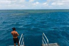 Immergendosi nella Grande barriera corallina Fotografia Stock Libera da Diritti