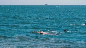 Immergersi in rosso mare vicino a Coral Reef L'Egitto, Sharm el-Sheikh archivi video