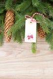 Immergrüner Baum mit Kegeln und Weihnachtstag Lizenzfreie Stockfotografie