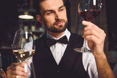 Immersed alcohol critic fixedly gazing at wine Stock Images