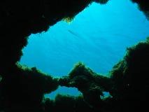 Immersione con bombole Fotografie Stock