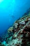 Immersione con bombole pericolosamente bella dell'Aceh Indonesia fotografie stock libere da diritti