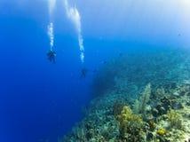 Immersione con bombole sopra un abisso di 6000ft Fotografie Stock Libere da Diritti