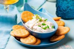 Immersione francese della cipolla con i cracker Immagini Stock