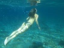 Immersione subacquea Fotografia Stock Libera da Diritti
