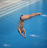 Immersione subacquea Fotografie Stock Libere da Diritti