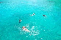 Immersione subacquea del mare Fotografia Stock