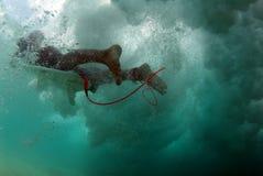 Immersione subacquea dell'anatra immagini stock libere da diritti