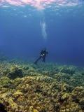 Immersione subacquea della donna in cima alla scogliera Fotografia Stock