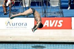 immersione subacquea della piattaforma 10m al campionato del mondo di FINA Fotografie Stock Libere da Diritti