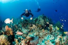 Immersione subacquea di Sidemount Fotografia Stock