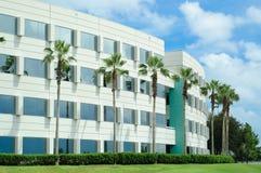 Immeuble de bureaux avec des paumes. Image stock
