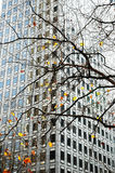 Immeuble de bureaux avec l'arbre de plan Photos libres de droits