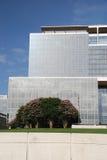 Immeuble de bureaux avec les arbres fleurissants Photos stock