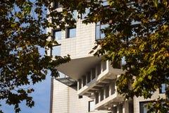 Immeuble de bureaux et arbre d'automne Images stock