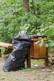 Immondizia in contenitore in foresta Immagine Stock