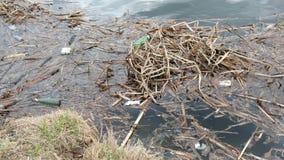 Immondizia dal fiume Inquinamento, ecologia e concetto di protezione dell'ambiente video d archivio