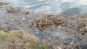 Immondizia dal fiume Inquinamento, ecologia e concetto di protezione dell'ambiente archivi video