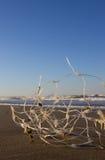 Immondizia di plastica sulla spiaggia fotografia stock libera da diritti