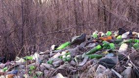 Immondizia in ecologia forestale dell'inquinamento della foresta della natura stock footage