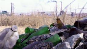 Immondizia in ecologia forestale dell'inquinamento della foresta della natura archivi video