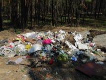 Immondizia nella foresta immagine stock libera da diritti