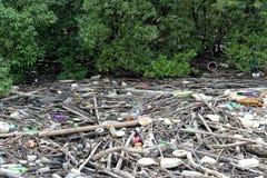 Immondizia nella foresta della mangrovia Fotografie Stock Libere da Diritti