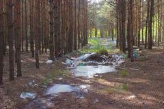immondizia su terra, paesaggio di scena della natura Immagine Stock Libera da Diritti