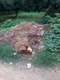 Immondizie del mio villaggio Fotografia Stock Libera da Diritti