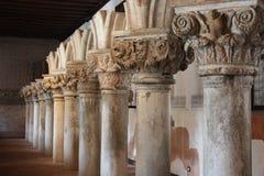 Immortal Columns Stock Image