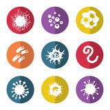 Immune bacteries and infection microbes icons. Immune bacteries and infection microbes flat style icons. Vector illustration Royalty Free Stock Photo