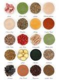 Immune Boosting Food royalty free stock photos