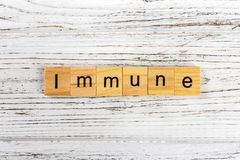 IMMUNE word made with wooden blocks concept.  Stock Images