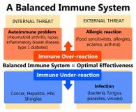 Immunförsvar stock illustrationer