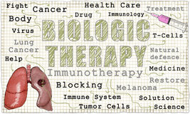 Immunotherapy on Blackboard Stock Images