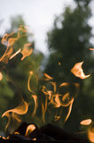 Imp del fuego Fotografía de archivo libre de regalías