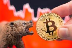 Impacto cripto do preço bearish de Bitcoin imagem de stock